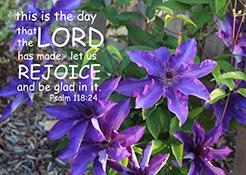 Psalm 118